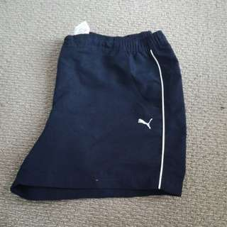 Navy Blue Puma Shorts