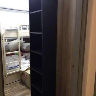 Contemporary Book Shelf