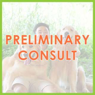 In-Person Preliminary Consultation - US Certified, AVA-Accredited Force-Free Dog Training by Pawrus Dog Training Academy