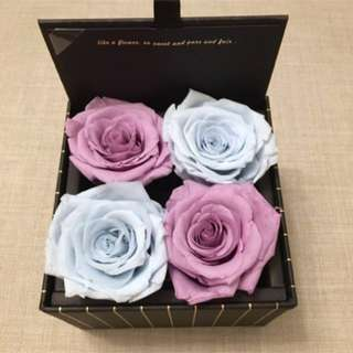 ❤️Large Box: Real Roses That Last A Year!