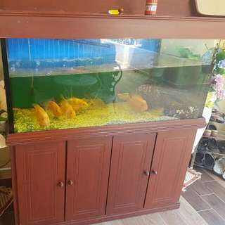 5ft X 3ft X 2.5ft Fish Tank With Cabinet, Pump, Filters & 2 Lights, Underwater And Tank Light.