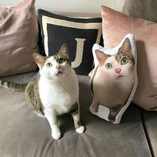 CUSTOM PILLOW based on your pets photo!