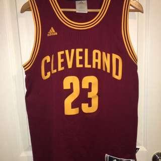 Cleveland Cavaliers Lebron James NBA jersey