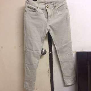 Paddocks Cream Jeans