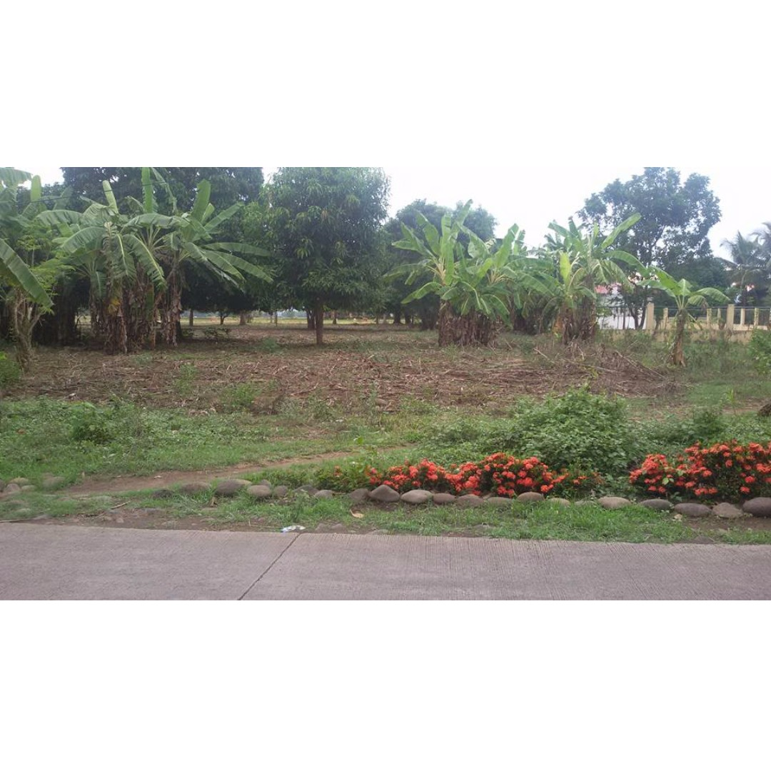 VACANT RESIDENTIAL LOT IN OZAMIZ CITY NEAR THE AIRPORT