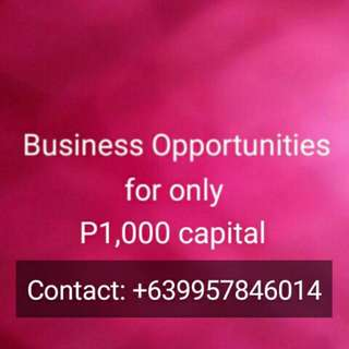 Business Opportunities (only P1,000 capital)