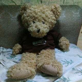 Hersheys Teddy Bear