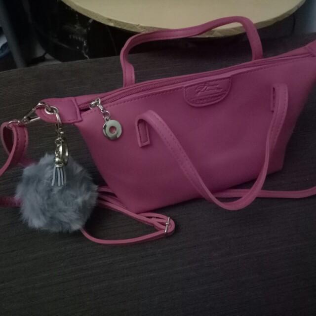 Fur ball bag accesories
