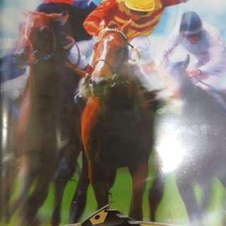 Switch Champion Jockey