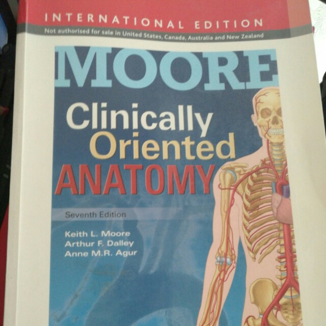 Moore\'s clinically oriented anatomy 7th ed, Books & Stationery ...