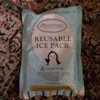 Autumnz Ice pack of 3