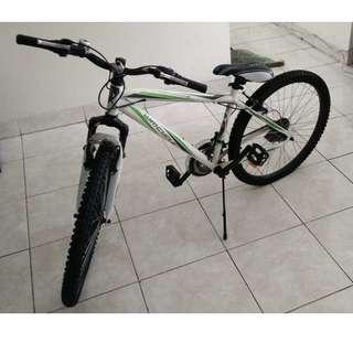 "Wimcycle Roadchamp 16"" bicycle"