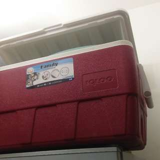 IGLOO 52QT 49L 大冰桶 冰箱 保冰