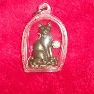 Lp Kambu - treasure calling cat.