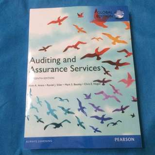 Hardcopy: Auditing and assurance services