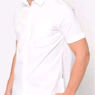 Kemeja Putih Larusso