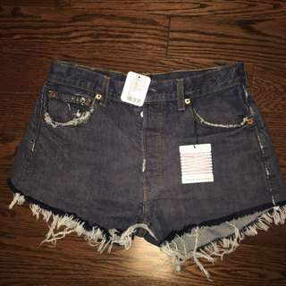 Levis Shorts (urban Outfitters)