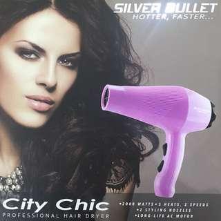 Silver Bullet Professional Hair Dryer