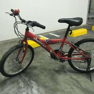 Kid's Bike Letting Go Cheap