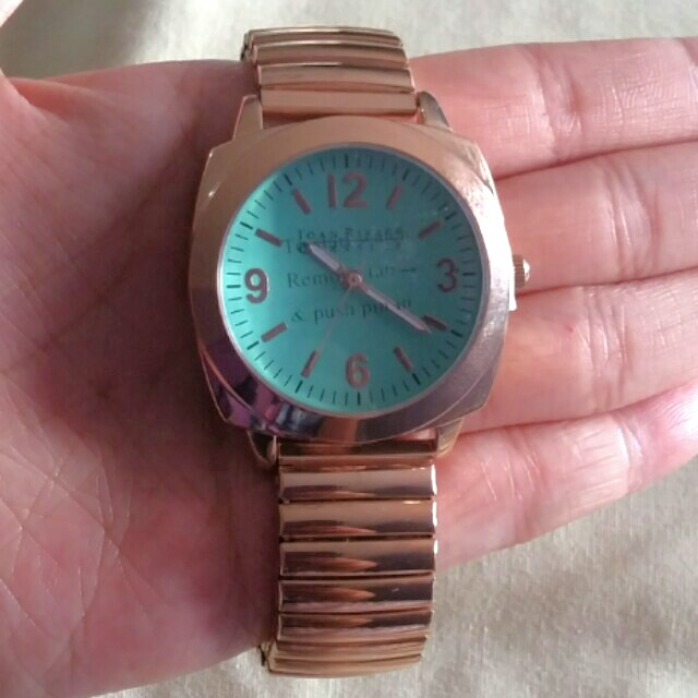 ⬇️REDUCED⬇️ BNIB Joan Rivers Watch