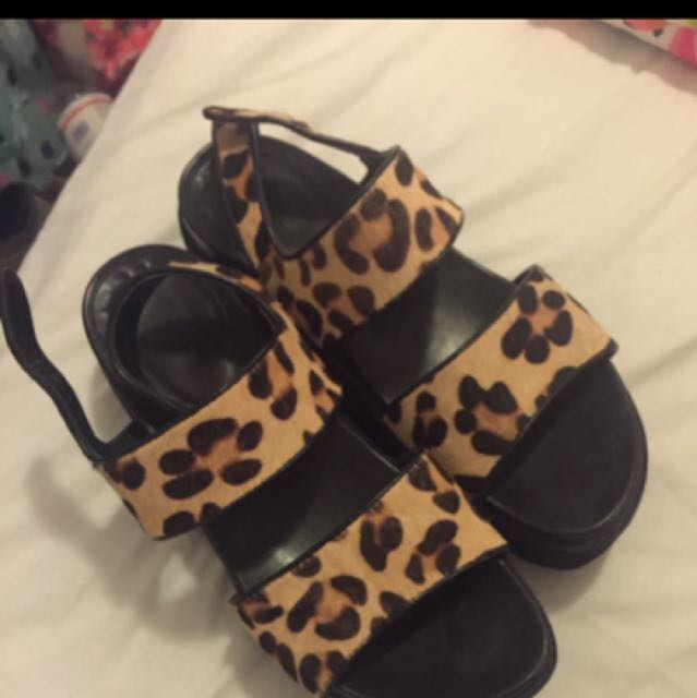 Windsor Smith Shoes Leopard Print