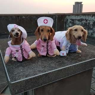 寵物服裝變身裝貓咪狗狗衣服醫生 護士裝