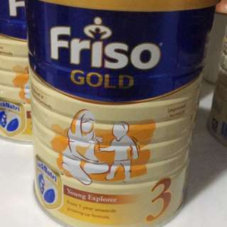 Friso 3 Gold