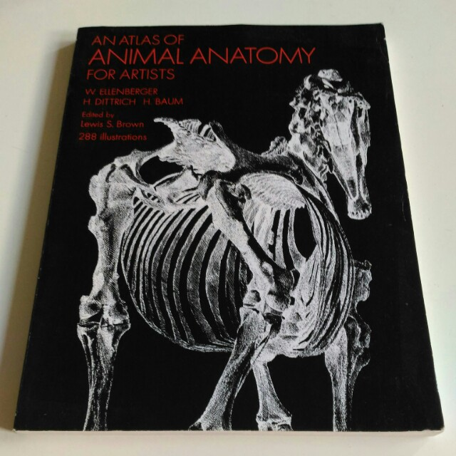 An Atlas Of Animal Anatomy For Artists Books Stationery Fiction