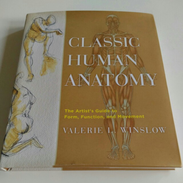 Classic Human Anatomy The Artist Guide To Form Function