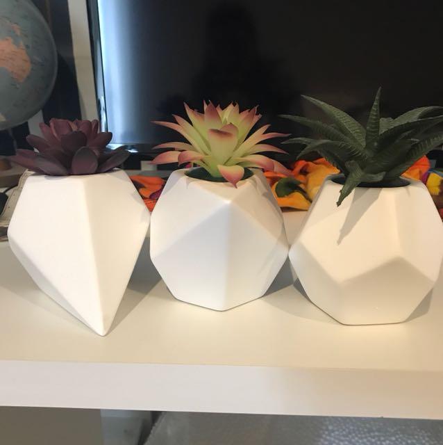 Set of Fake plants