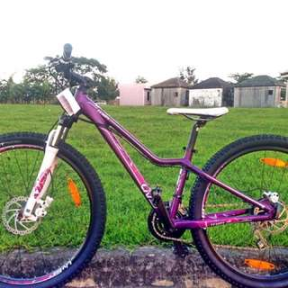Giant Liv Tempt 4 (Mountain Bike for Women)
