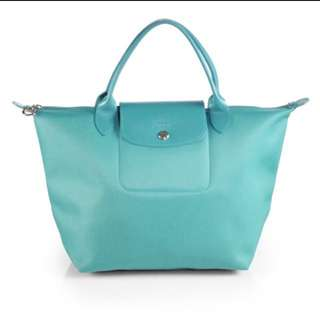 Authentic longchamp planetes
