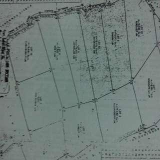 Lot Farm 114 hectares