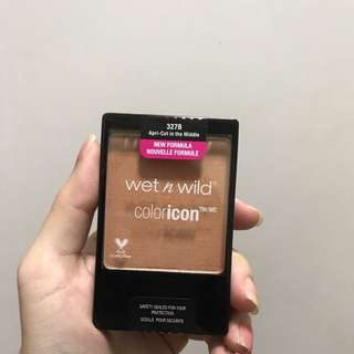 wet n wild apricot in the middle blusher