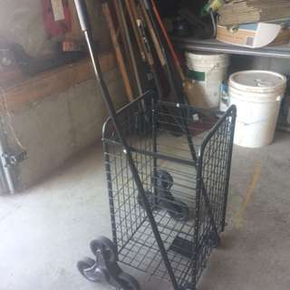Newspaper/Shopping Cart