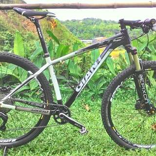 mountain bike giant xtc SL 29er