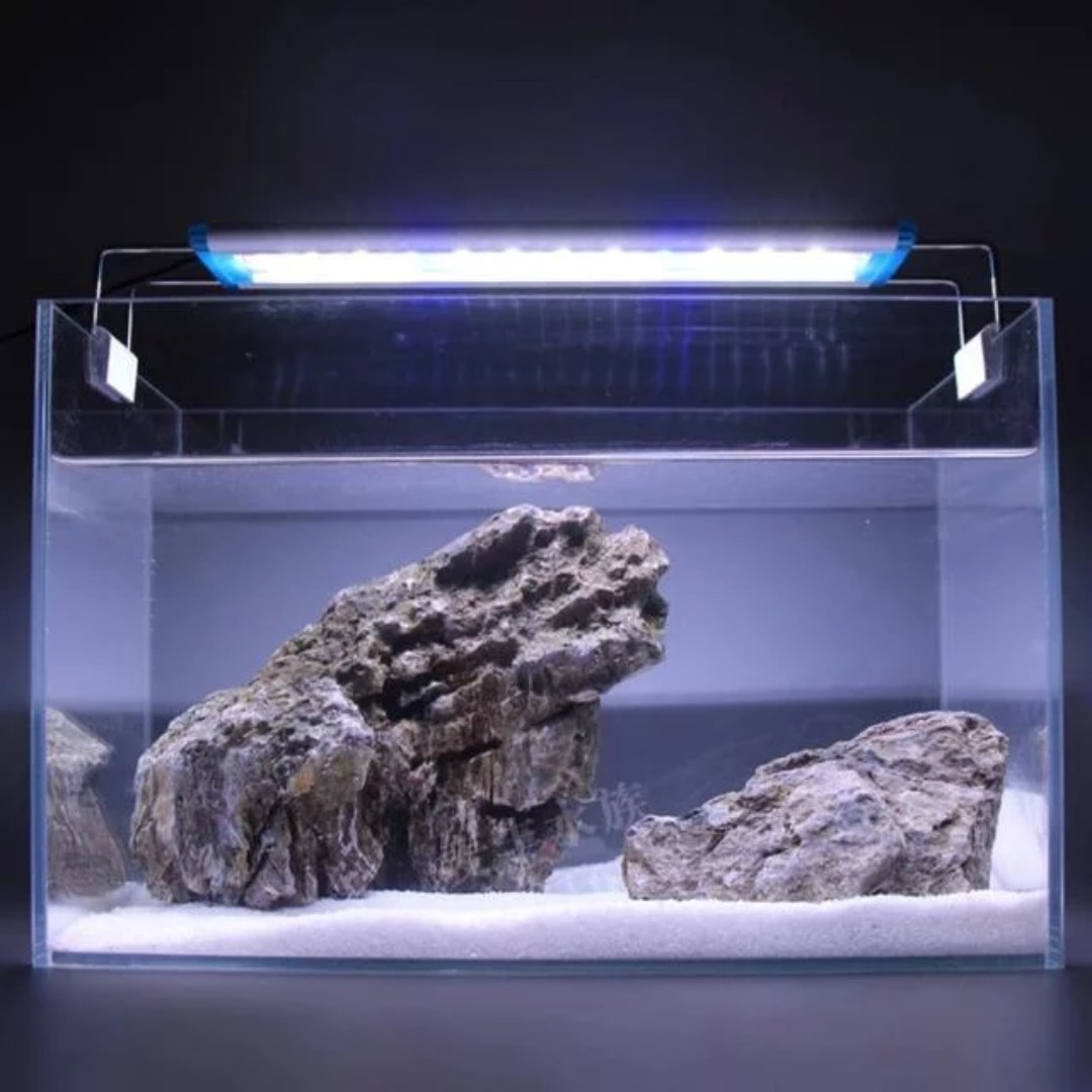 lights tank fixtures lamp aquarium lighting saltwater inspirations led fish systems top unbeatable fluorescent light