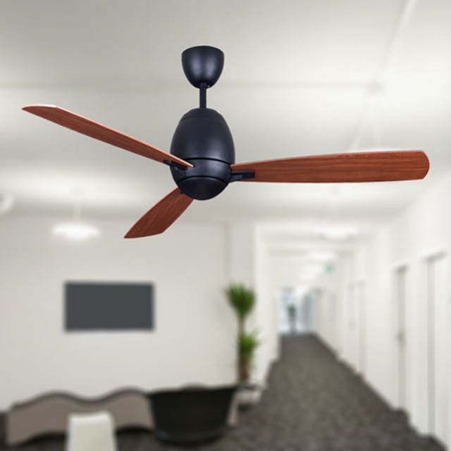 Nsb omega 52 ceiling fan with remote home appliances on carousell photo photo mozeypictures Choice Image
