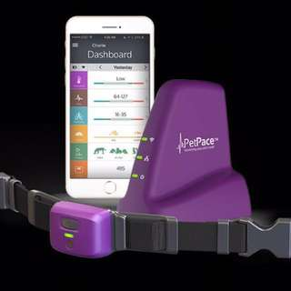 """*Reduced* Petpace """"Fitbit"""" For Your Pet"""