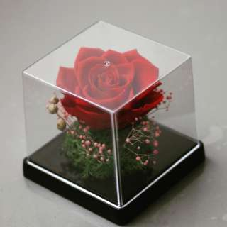 Preserved Flowers in Acrylic Box