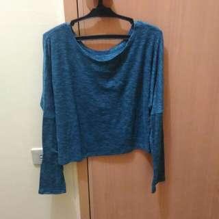 Crop Long Sleeves/Sweater