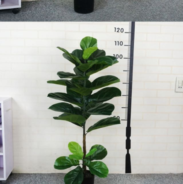 Artifical 1.8m fiddle fig