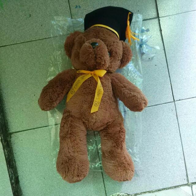 Boneka beruang graduation