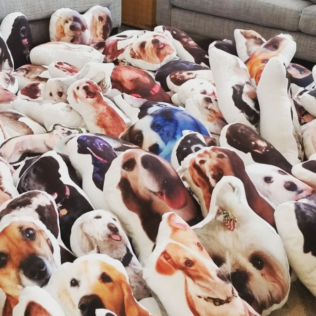 CUSTOM PILLOW BASED ON PET PHOTO!