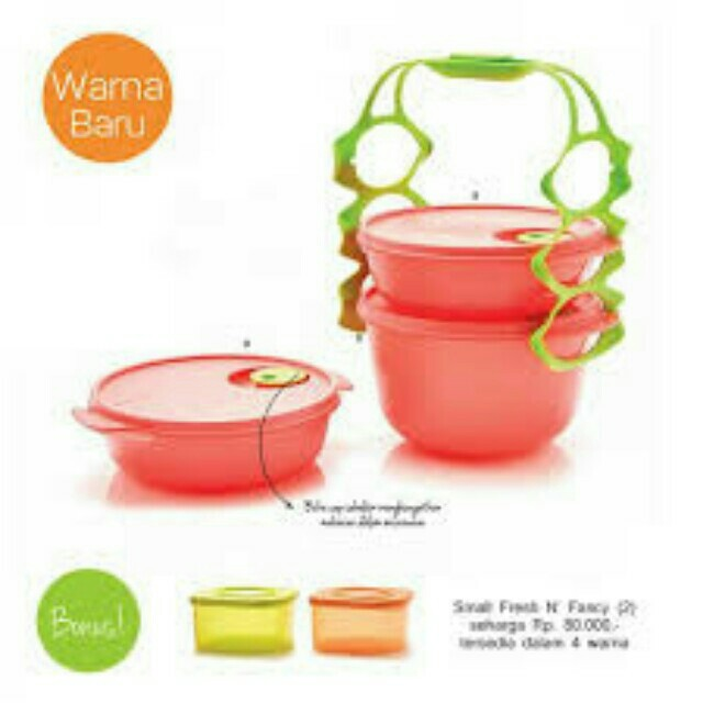 Carry all bowl free 2 pcs small n fresh