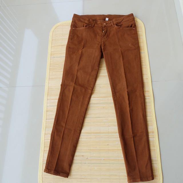 Chino Brown Pants