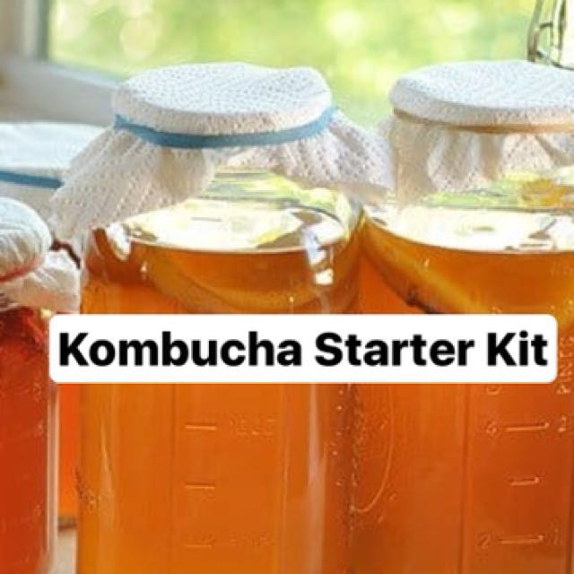 Kombucha starter kit (Scoby & Starter tea) super easy to brew!