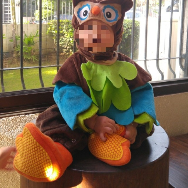 Owl Costume for 9-12mos