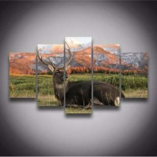 5 Piece Framed Print Deer