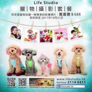 LifeStudio 專業寵物家庭攝影